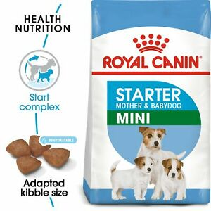 Royal Canin Mini Starter Mother And Babydog Dry Adult & Puppy Dog Food