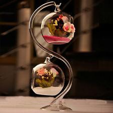 New Hanging Glass Flower Planter Vase Terrarium Container Garden Home Ball Decor