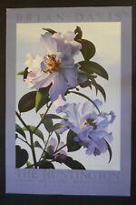 BRIAN DAVIS -CAMELLIAS The Huntington Library Art Gallery 36X24 POSTER PRINT
