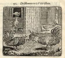 Antique Print-HEN-ROOSTER-FOWL-Vondel-Geraerts-1720