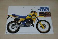 202970) Suzuki TS 250 X Prospekt 198?