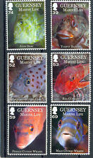 Guernsey Marine life 2013 new issue set of 6 mnh