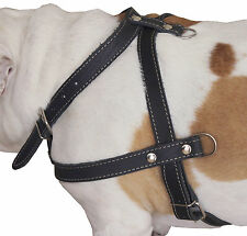 """Genuine Leather Pulling Dog Harness 1"""" wide 33""""-37"""" chest Rottweiler Cane Corso"""