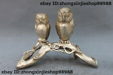 Chinese White Bronze Silver bird of Minerva owl on Plum Branches Statue
