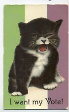 SUFFRAGETTE  CAT I WANT MY VOTE!   OLD POSTCARD