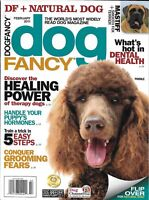 Dog Fancy Magazine Therapy Healing Power Training Dental Health Grooming Poodle