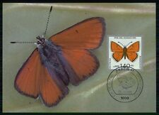 BRD MK 1991 SCHMETTERLING BUTTERFLY MAXIMUMKARTE CARTE MAXIMUM CARD MC CM /m474