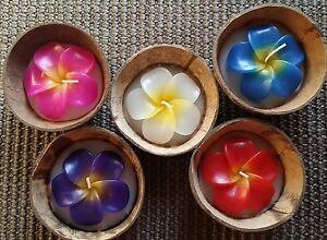 Hawaiian Plumeria Flower Candle in Natural Coconut Shell - Individually Packaged