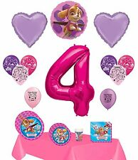 Paw Patrol Skye Happy 4th Birthday Party Supply and Balloon Bundle
