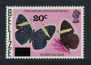 Belize Cracker Butterfly 'Hamadrias arethusa' 1976 MNH SG#445