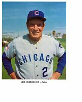 8x10 photo, Baseball, Leo Durocher,  Chicago Cubs Team Issued ~ Pre-game pose