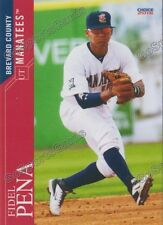 2016 Brevard County Manatees Fidel Pena RC Rookie Brewers