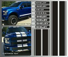 2009-2016 Ford F150 Supercharged Shelby Truck  Decals Rally Stripes Graphic Kit