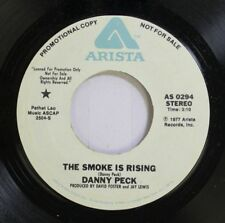 Rock Promo Nm! 45 Danny Peck - The Smoke Is Rising / Where Is My Heart On Arista