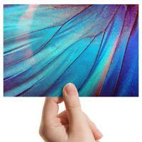 "Photograph 6x4"" - Blue Morpho Butterfly Macro Art 15x10cm #3486"