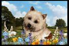 Summer Floor Mat - Wheaten Cairn Terrier 39094