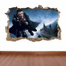 Harry Potter - hole in the wall full colour feature sticker decal