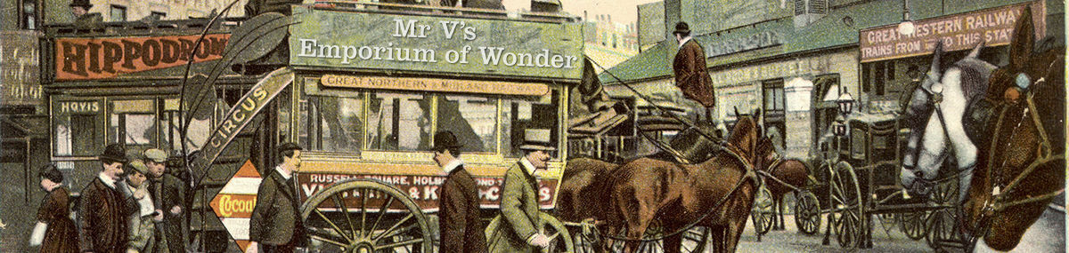 Marvelous Mr V's Emporium of Wonder