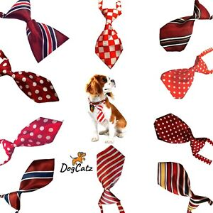 Dog Ties, Collar Neck Tie, Bowties, Cats Puppies, Girl Boy Small Medium S M, Red