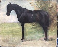 Tableau Ancien Huile Portrait De Cheval Par Pierre Gavarni (1846-1932)