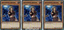 x 3 Amazoness ARCHER - ledu-en012 - commun - 1st édition Yu-Gi-Oh ! Carte