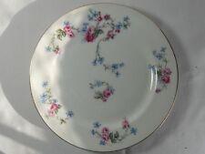 Limoges France LIM10 Salad Plate