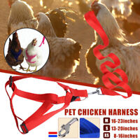 Chicken Harness Hen Duck Goose Pet Breathable Straps Bright Fun Adjustable Vest