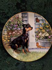 Fascination Patricia Bourque Collector Plate Danbury Miniature Pinscher Dogs