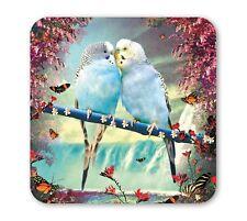 Wellensittich: Papagei: Budgies Couple - Untersetzer - Coaster - Bierdeckel, LIP