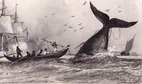Gravure XIXe Chasse à la BALEINE Whaling Whale Китобойный промысел 1848 捕鯨
