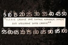 Flaunt Your Success - One Single LRG Number Charm for Weight Watchers Key Ring!