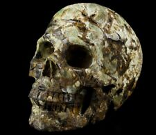 """5.0"""" GREEN OPAL Carved Crystal Skull, Realistic, Crystal Healing"""