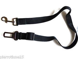 ceinture de sécurité 25 mm Mousqueton Auto chien chat dog