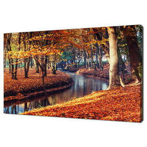 FOREST RIVER IN AUTUMN MODERN HOME DECOR CANVAS PRINT WALL ART PICTURE