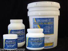 E-Z Patch® 4 FS White Grout Pool Tile Repair Cement 10 lb. EZP-143
