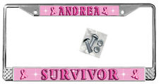 Breast Cancer License Plate Frame Personalize Name Or Text  Polished Metal TXT
