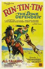 THE LONE DEFENDER Movie POSTER 27x40 Rin Tin Tin Walter Miller June Marlowe