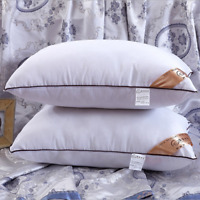 2018 New Feather Silk Ultra Soft Bed Pillow Case Five Star Hotel Pillows Healthy