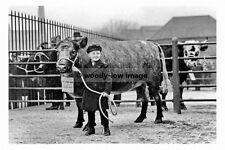 pt8667 - Cattle Market , Doncaster , Yorkshire - photograph 6x4