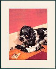 COCKER SPANIEL MASTER MOUSER TRAP PROBLEM COMIC DOG PRINT MOUNTED READY TO FRAME