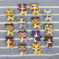 LPS In Box Collie Dog Littlest Pet Shop Hasbro Girl Kids Gift Cute Toys AU