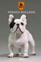 "Mr.Z 003 Animal Simulation French Bulldog For 12"" Figure Scene 1:6 Scale"