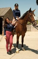 Rhinegold Ladies riding jodhpurs/jodphurs regular and long leg all sizes