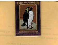 2012 GOODWIN CHAMPIONS ANIMAL KINGDOM #AK-179, NORTHERN ROCKHOPPER PENGUIN RARE!