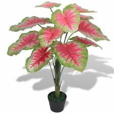 Vidaxl Plante Artificielle avec Pot Caladium 70 cm Vert et Rouge