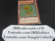 Yugioh Dandylion AP04-EN001 Ultimate Rare!
