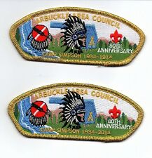 "Boy Scout /""Jon/"" Arbuckle Area Council Garfield Gold Mylar Border CSP//SAP"