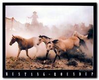 Western Horse Mustang Roundup Wall Decor Art Print Poster (16x20)