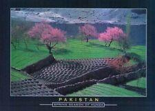 Pakistan Beautiful Postcard Hunza Valley .........