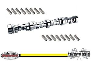 1999 - 2006 GM Chevrolet 4.8 - 5.3 Camshaft Cam and Lifters